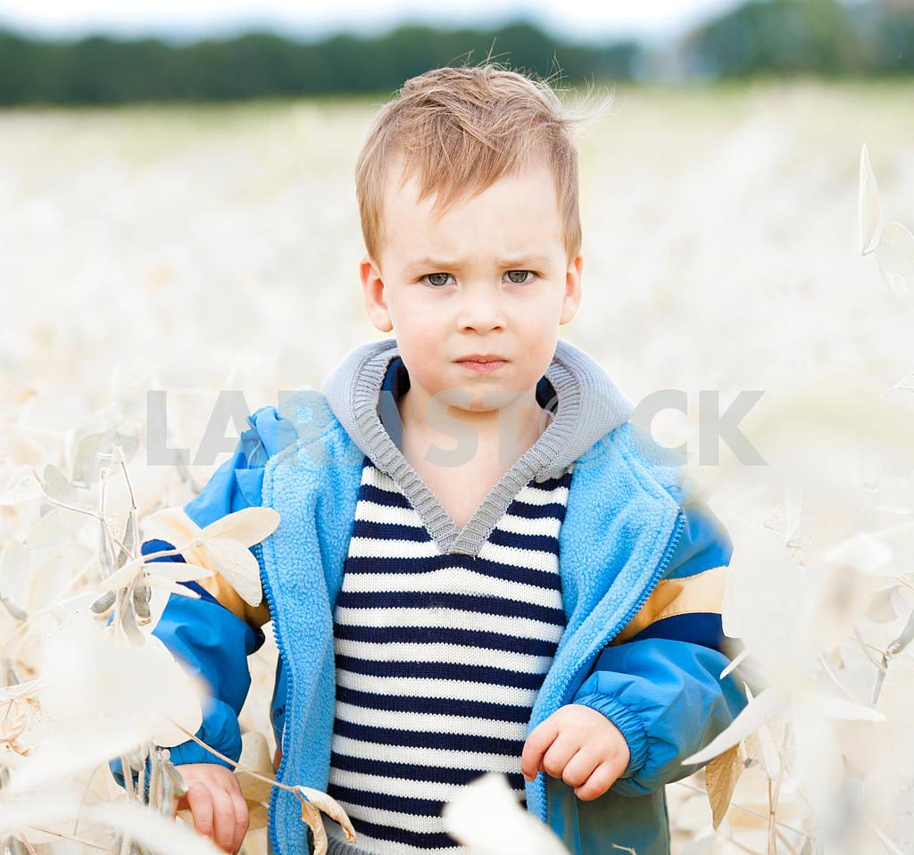 Little boy plays in field — Image 10095