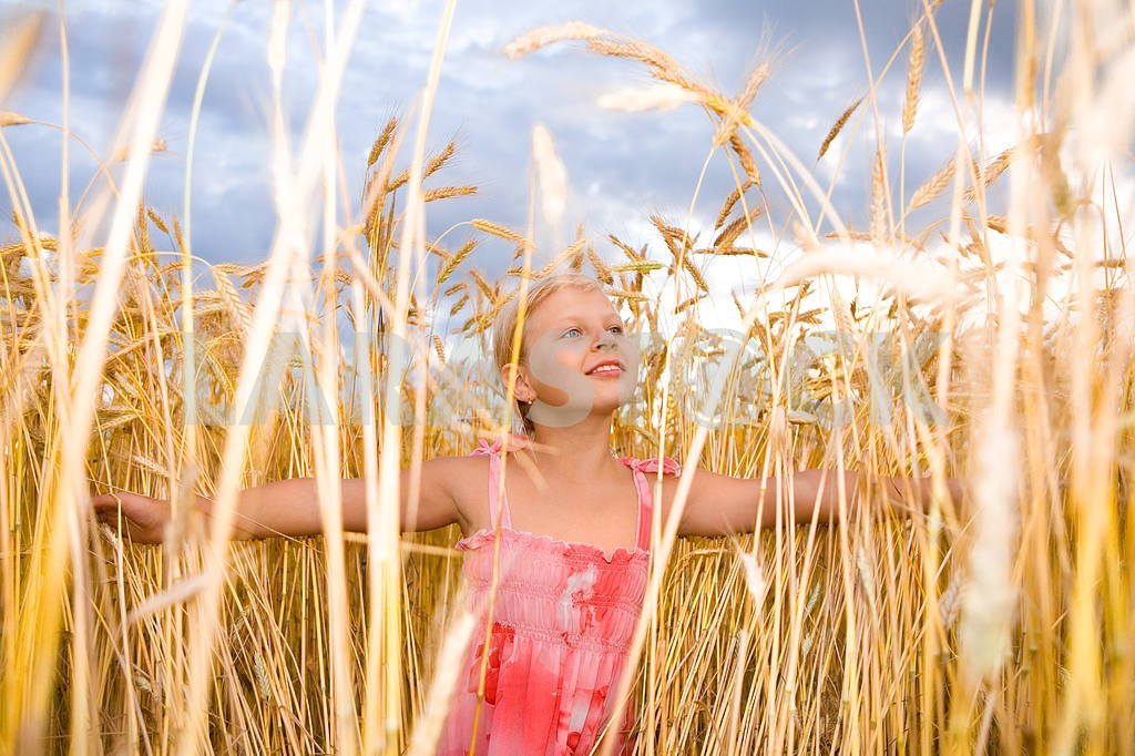 Little girl in a wheat field. Against the backdrop of blue sky. — Image 11610