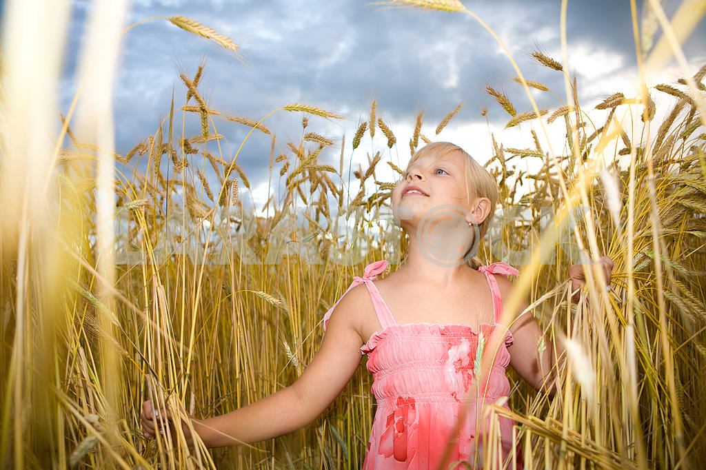 Little girl in wheat field — Image 11611