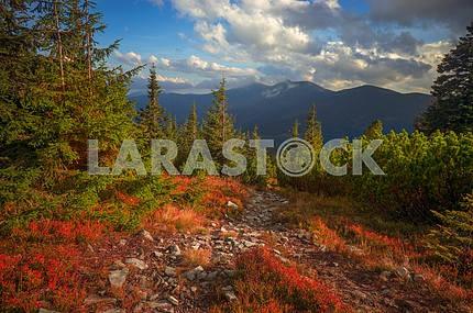 Альпийский осенью в Горганы