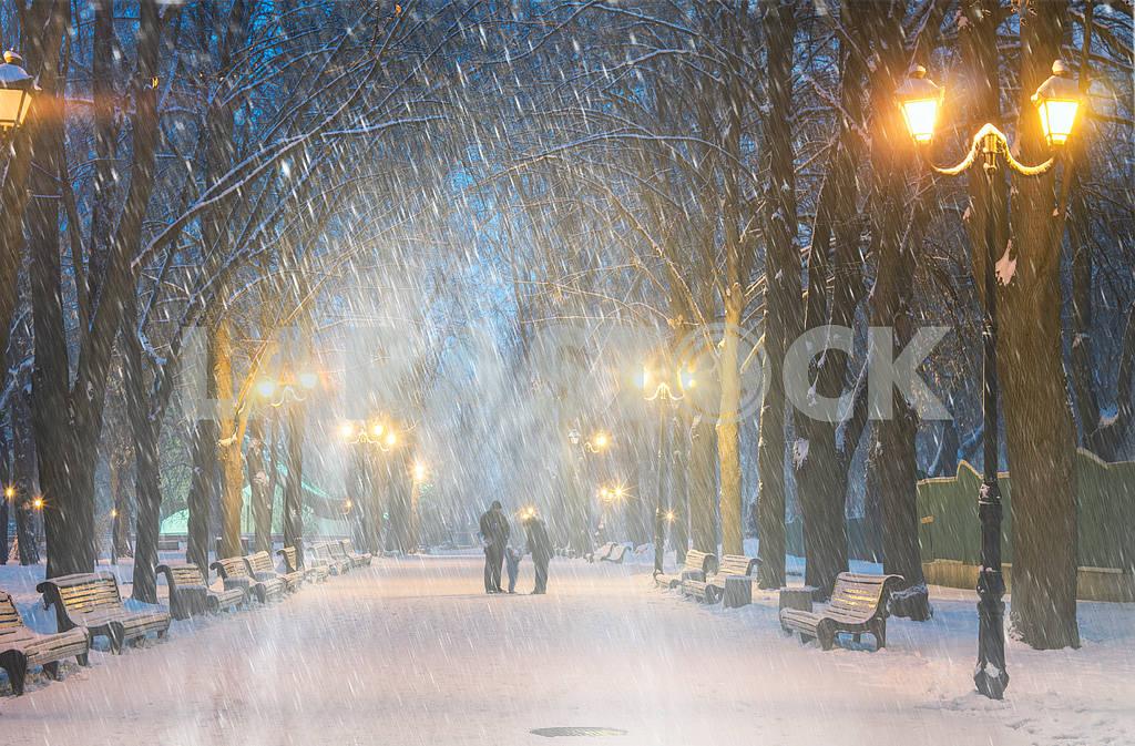 Storm in Mariinsky Park — Image 11797
