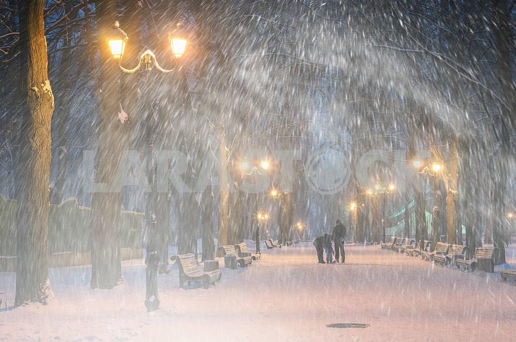Storm in Mariinsky Park — Image 11799