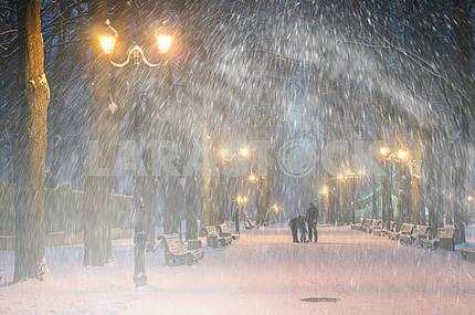 Буря в Мариинском парке