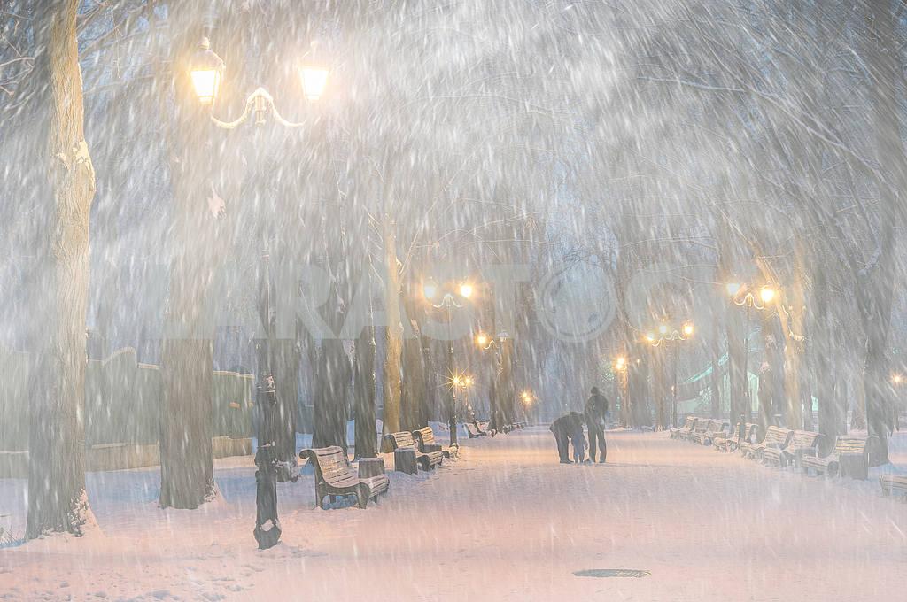 Storm in Mariinsky Park — Image 11801