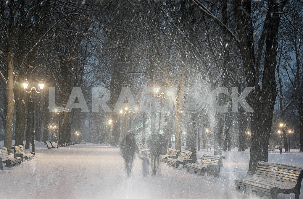 Storm in Mariinsky Park — Image 11802