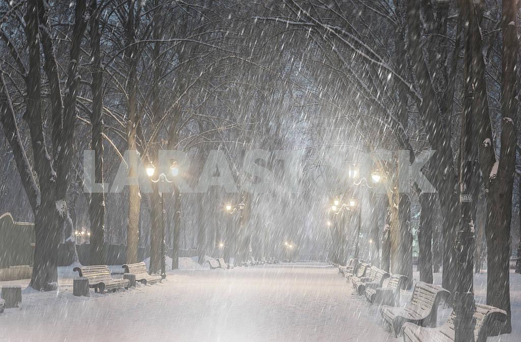 Storm in Mariinsky Park — Image 11804