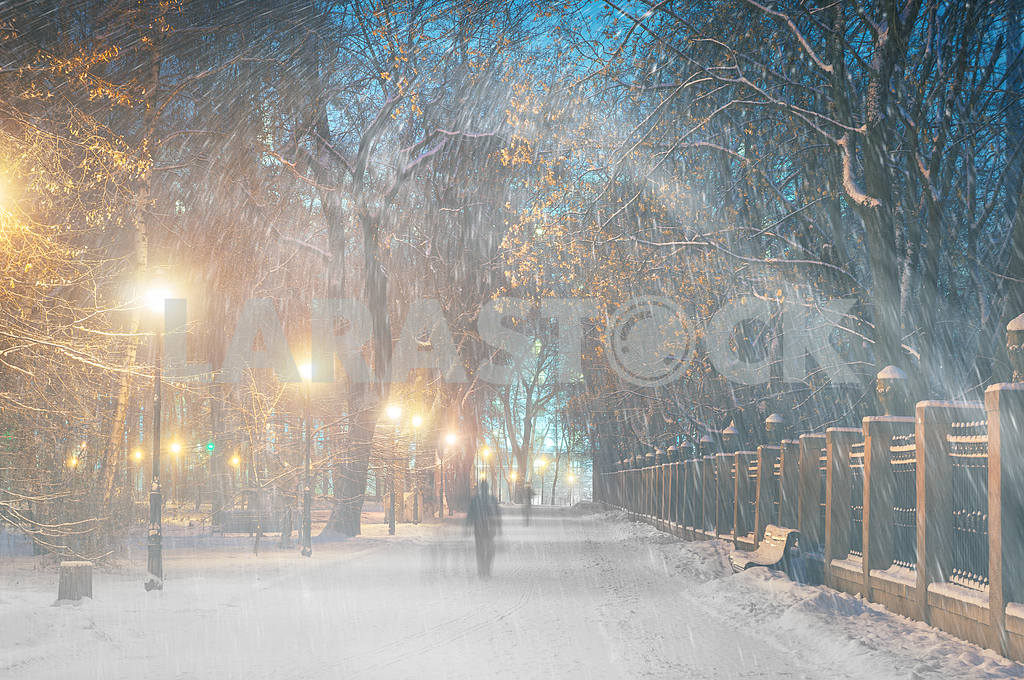 Storm in Mariinsky Park — Image 11806