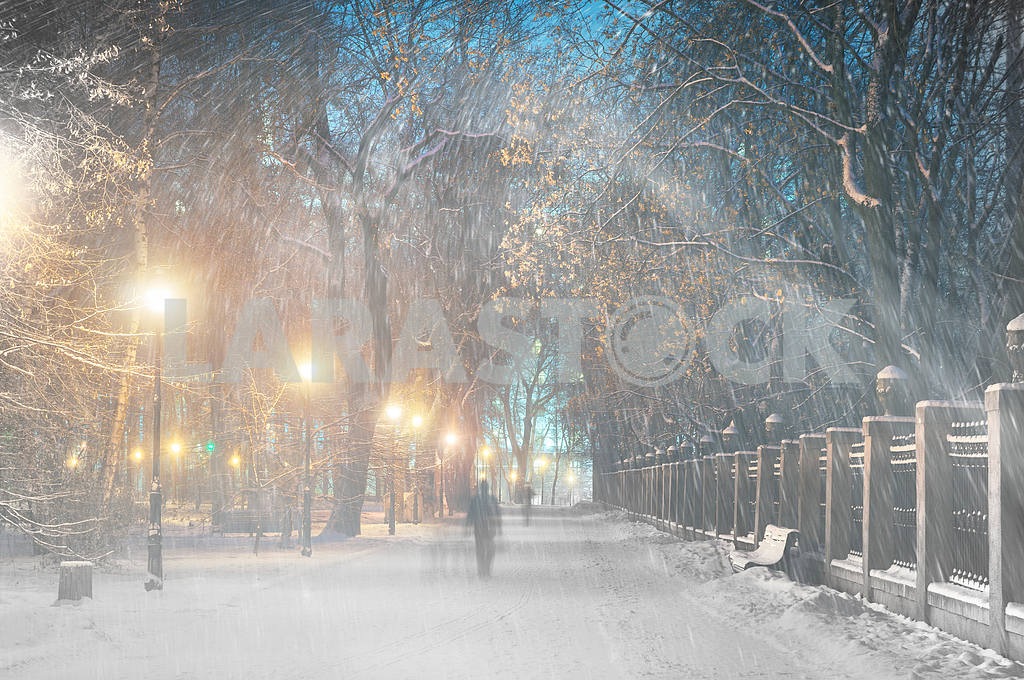 Storm in Mariinsky Park — Image 11807