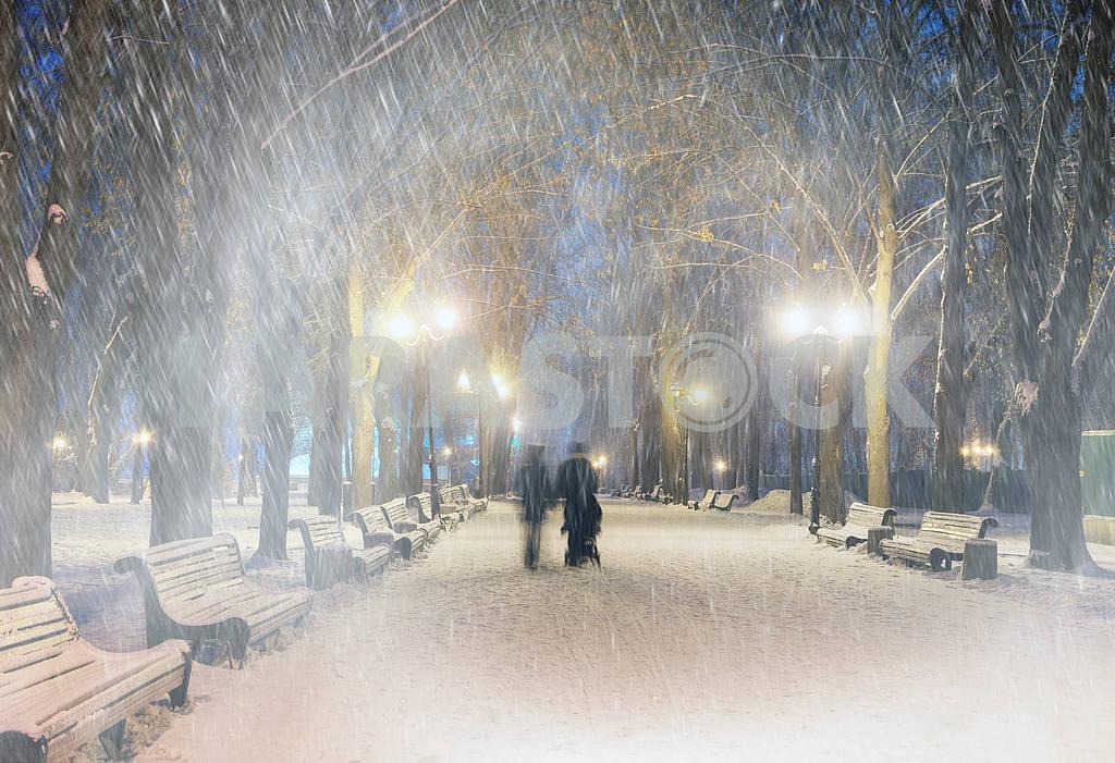 Storm in Mariinsky Park — Image 11809