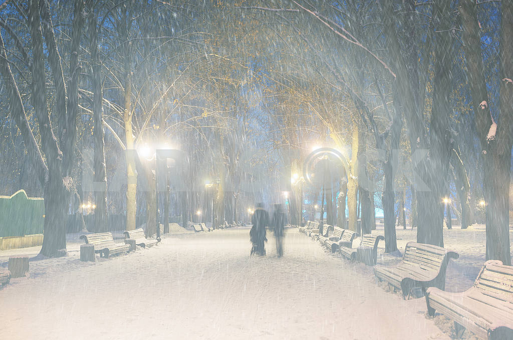 Storm in Mariinsky Park — Image 11810