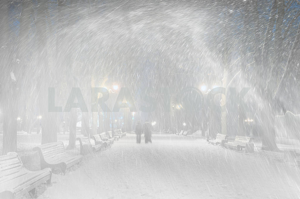 Storm in Mariinsky Park — Image 11813