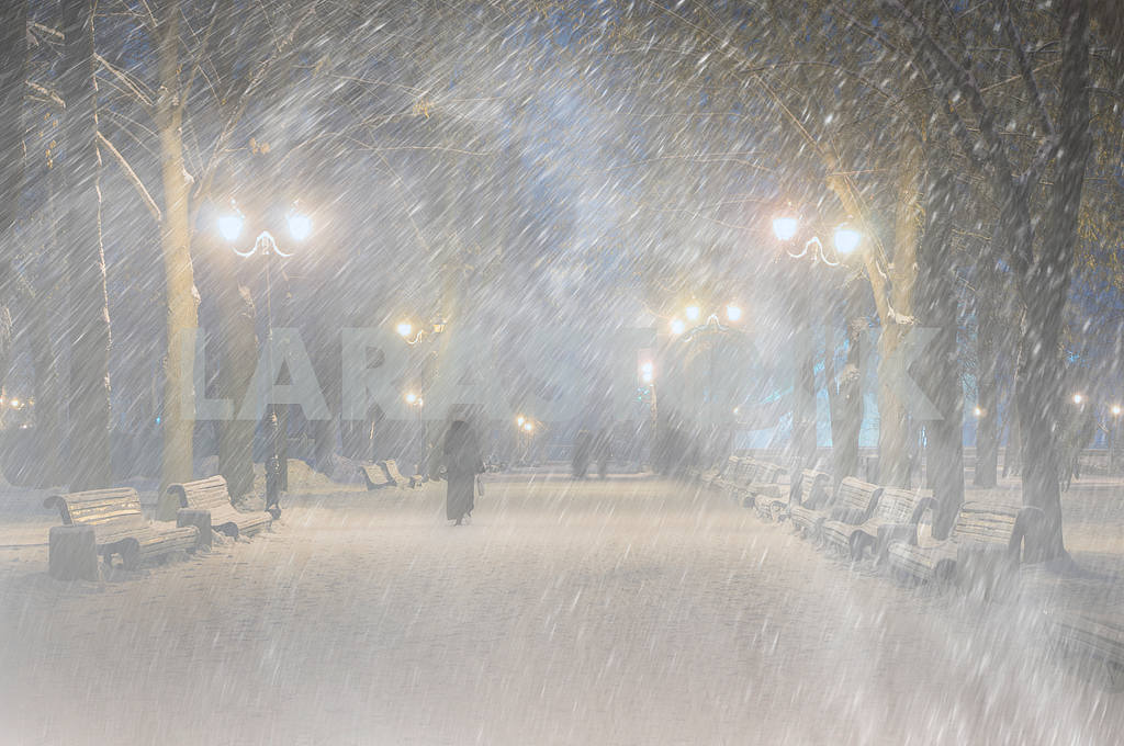 Storm in Mariinsky Park — Image 11814