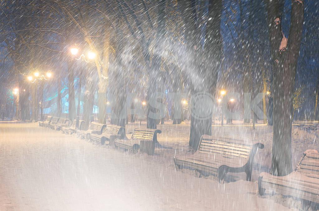 Storm in Mariinsky Park — Image 11815