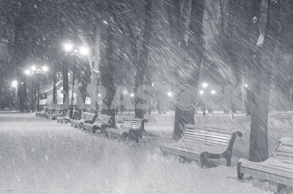 Storm in Mariinsky Park — Image 11817