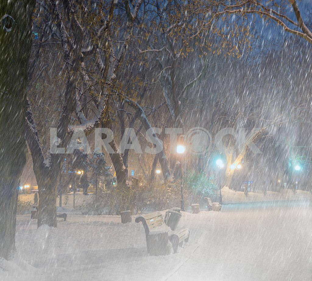 Storm in Mariinsky Park — Image 11820