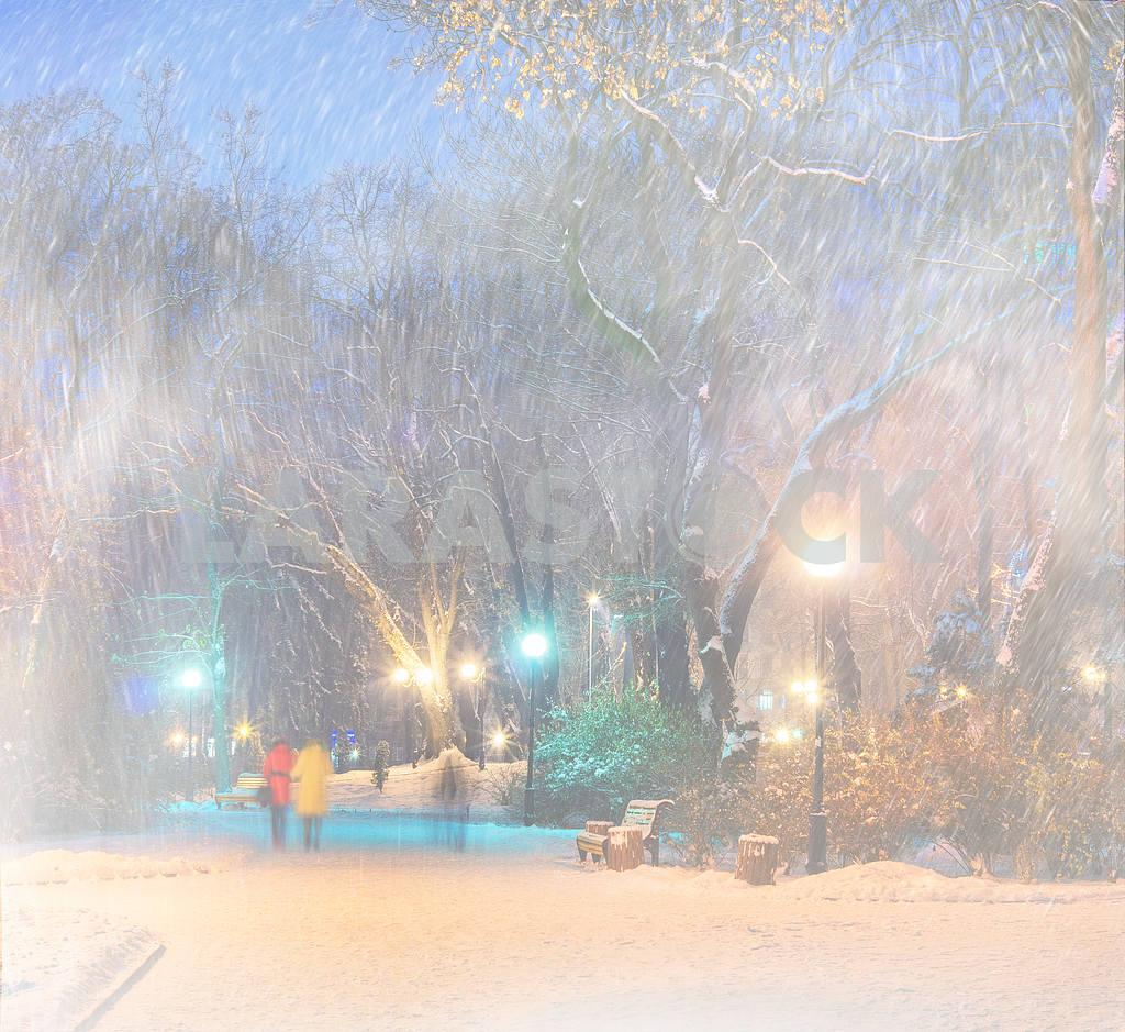 Storm in Mariinsky Park — Image 11821