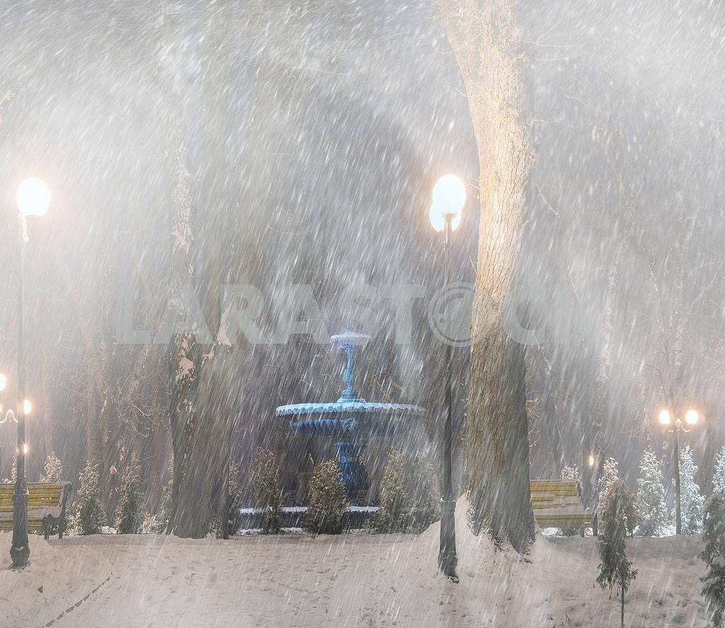 Storm in Mariinsky Park — Image 11823