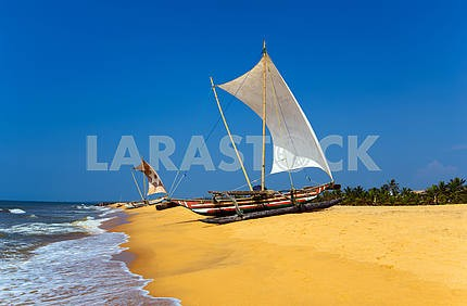 Ocean coast of Sri Lanka