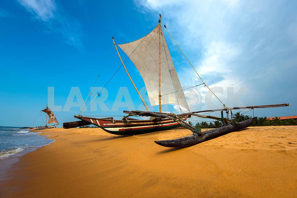 Ocean coast of Sri Lanka — Image 1201