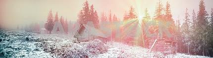 Шеперд хижины в лесу туманной