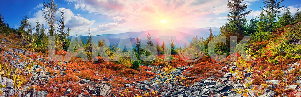 Alpine autumn in Gorgany — Image 12256