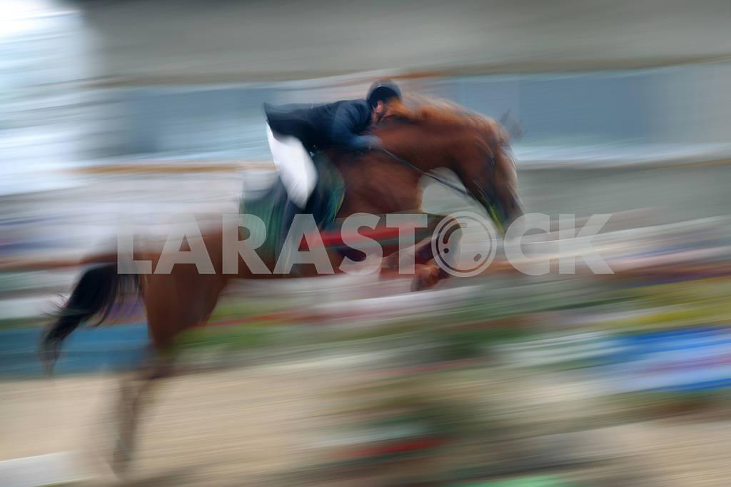 Jump a horse through the barrier — Image 12963