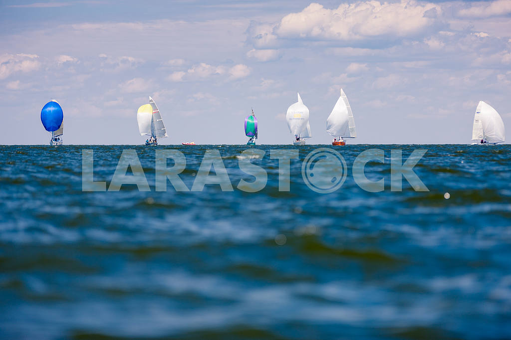 XII Sailing Regatta, autumn 2015 — Image 13810