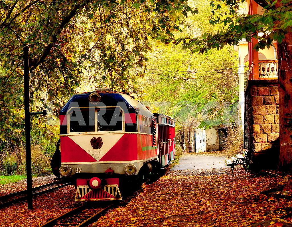 Autumn train in leaves — Image 1403