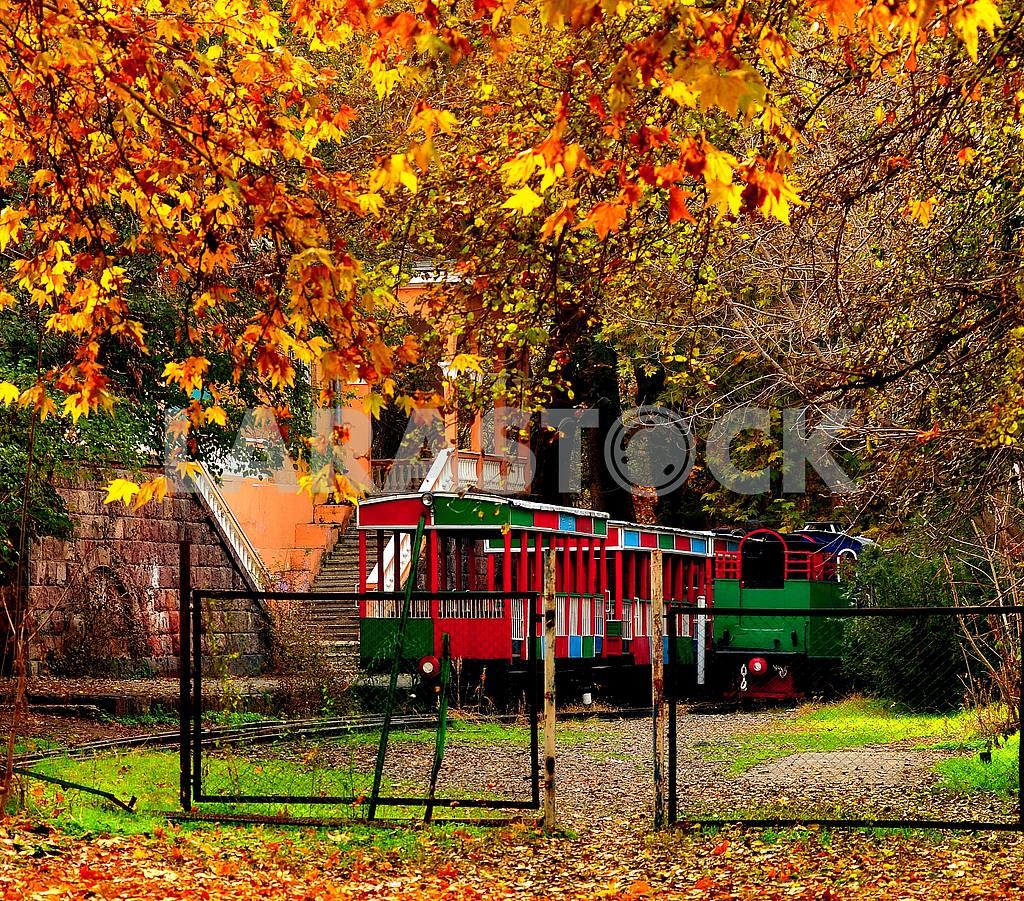 Late autumn leaves — Image 1404