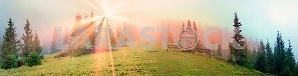 Radiance misty forest