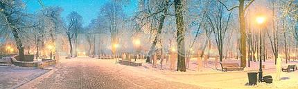 Mariinsky garden during inclement weather
