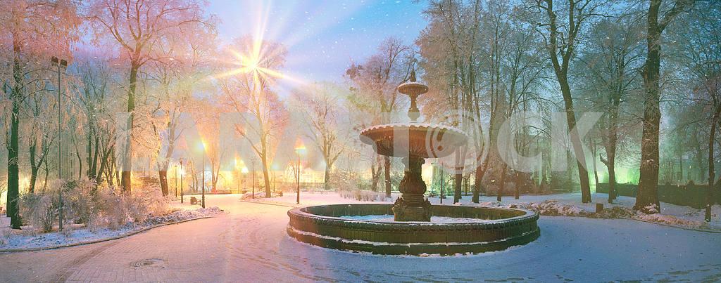 Rays snow star — Image 14301