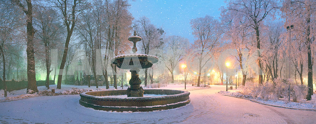 Mariinsky garden during inclement weather