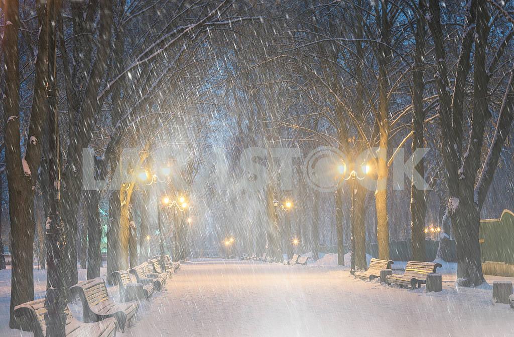 Storm in Mariinsky Park — Image 14948