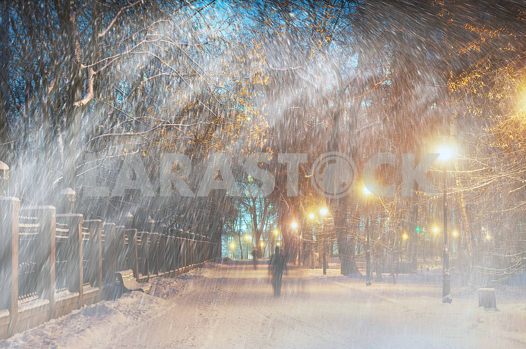 Storm in Mariinsky Park — Image 14949