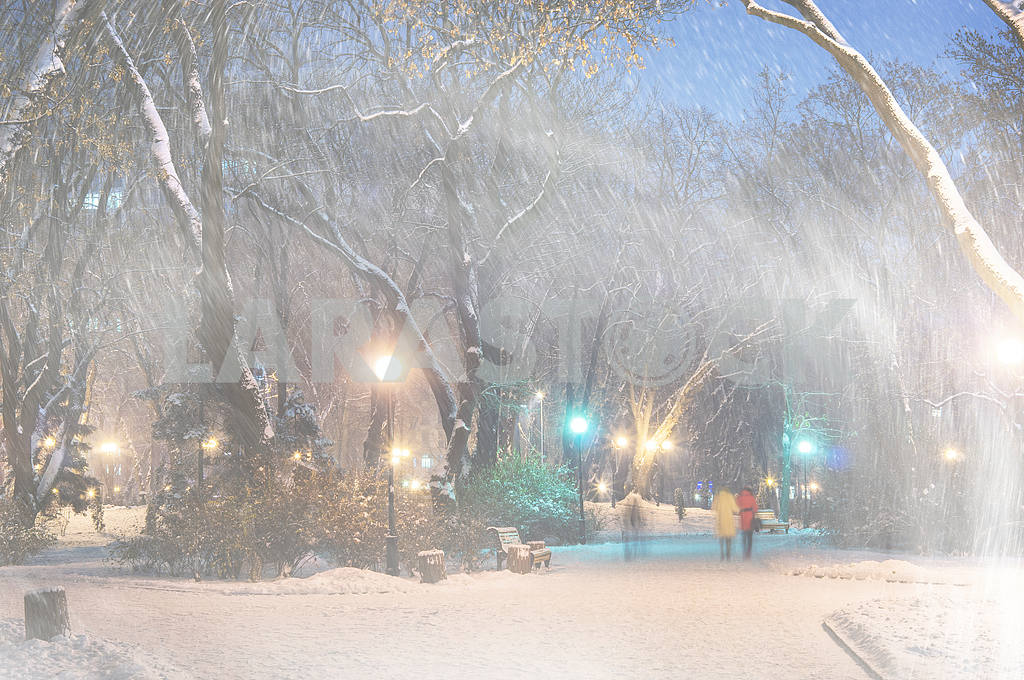 Storm in Mariinsky Park — Image 14951