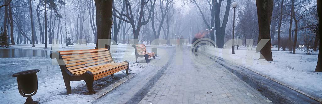 Mariiinsky Park — Image 15177