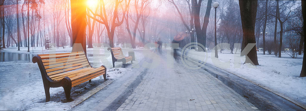 Mariiinsky Park — Image 15178