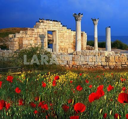 Греческие здания