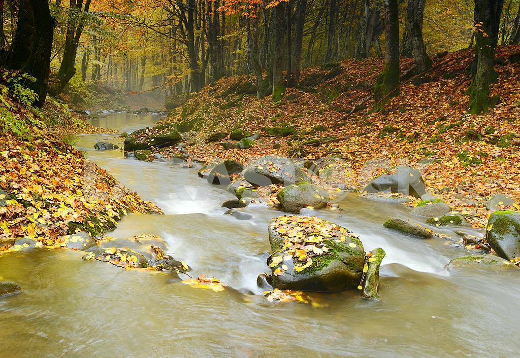 Autumn landscape mountain river — Image 1546