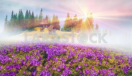 mountainous Carpathian wooden church