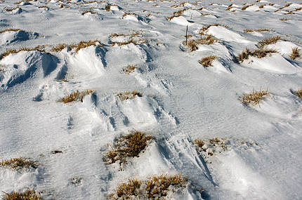 Snow patterns Carpathians