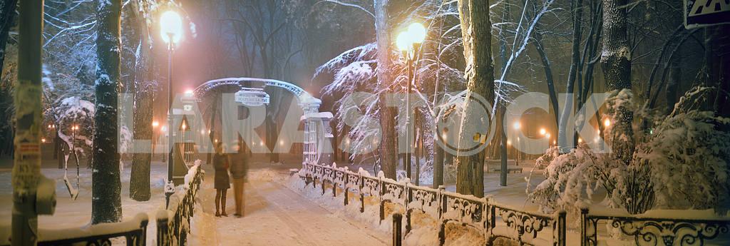 Mariinsky Park — Image 15936