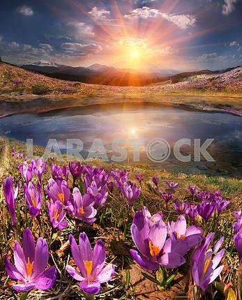 Весна таяния снега и в долинах Карпатских