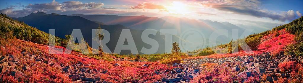 Alpine autumn in Gorgany — Image 16099