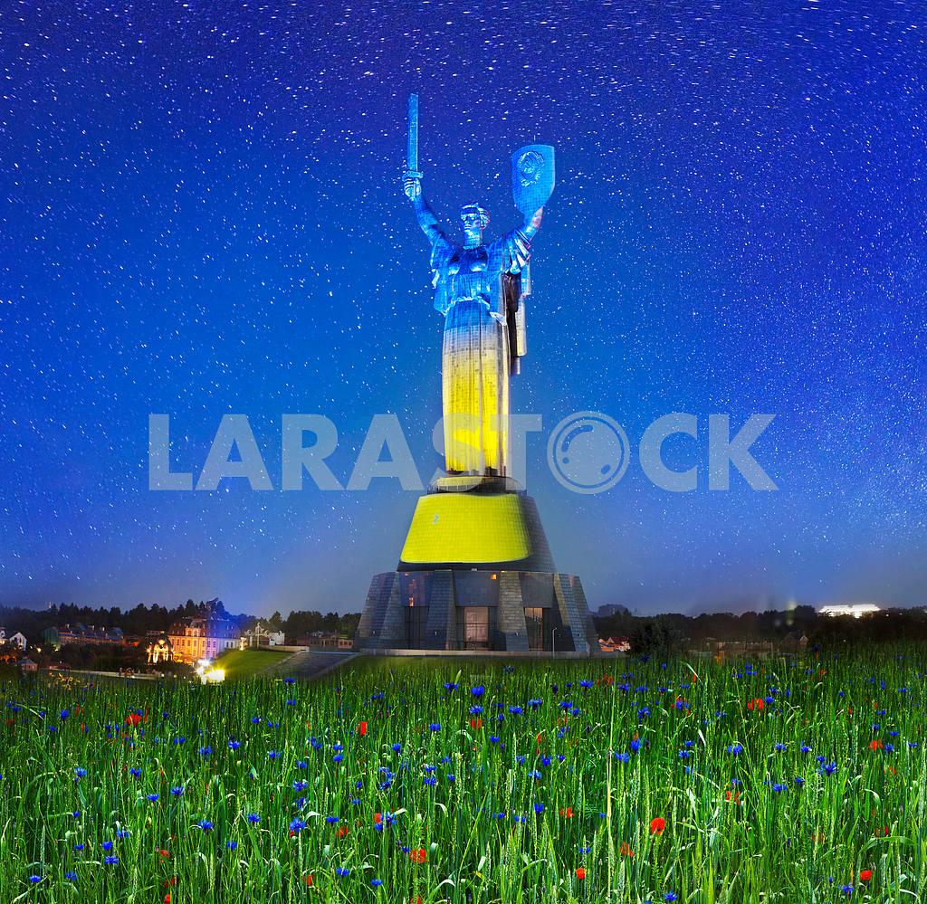 День Конституции Украины — Изображение 16260
