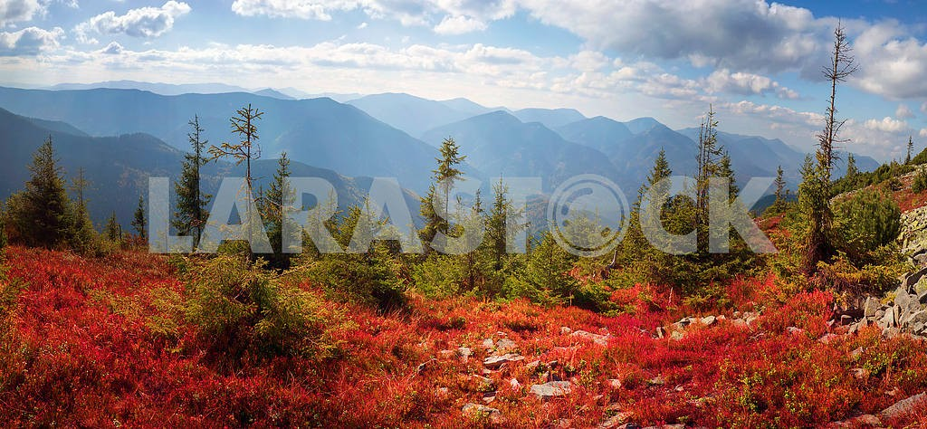 Alpine autumn in Gorgany — Image 16338
