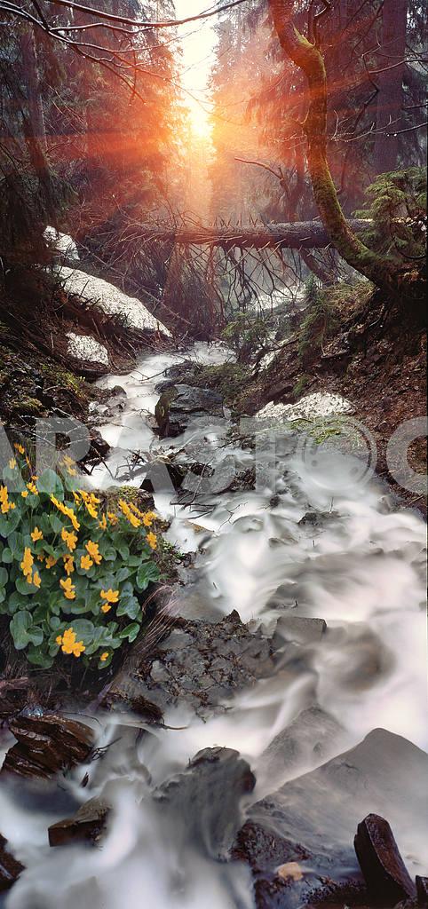 Mountain waterfall  — Image 16376