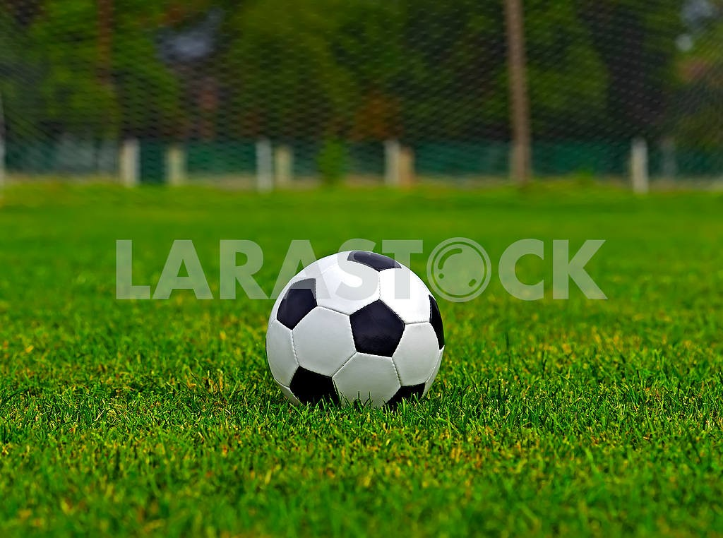 Leather soccer ball — Image 1650