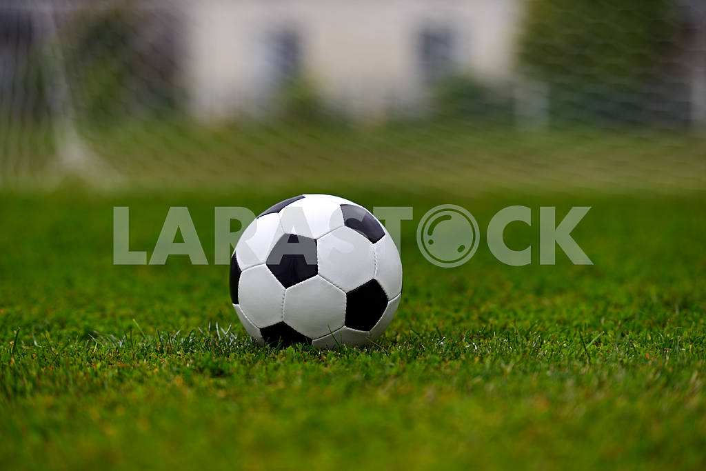 Leather soccer ball — Image 1651